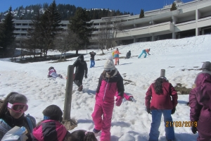 Ski3 (3)