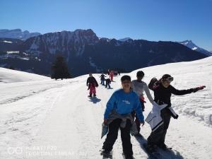 ski (6)