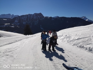 ski (7)