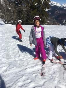 ski (8)